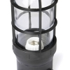 ProSeries Medium Base Luminaire with Glass Globe and Safety Cage